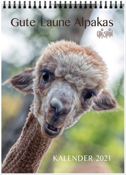 Gute Laune Alpakas von Uli Stein, Kalender 2021