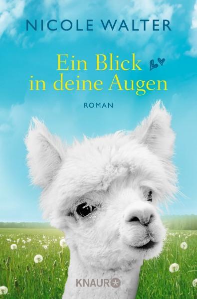 """Buch """"Ein Blick in deine Augen"""""""